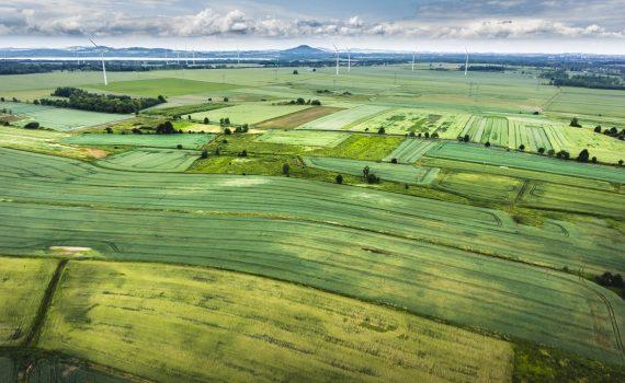ecologie industrielle territoriale ad fine